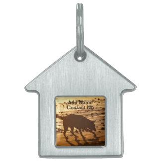 Perro en la etiqueta del mascota de la playa placas mascota