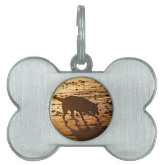 Perro en la etiqueta del mascota de la playa placas de mascota