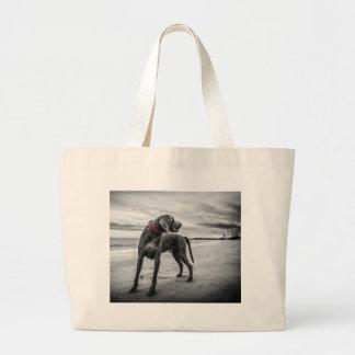 Perro en la naturaleza bolsas