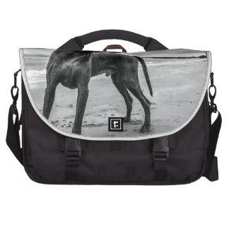 Perro en la naturaleza bolsas para ordenador