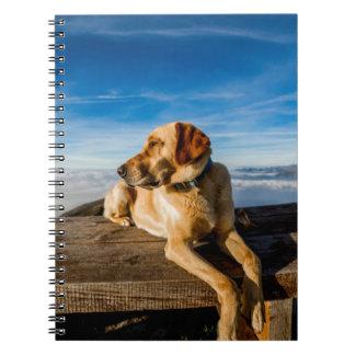 Perro en la naturaleza libro de apuntes con espiral