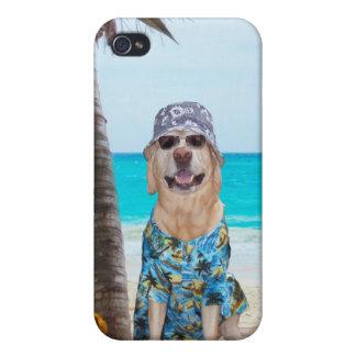 Perro en la playa, en camisa hawaiana iPhone 4 carcasas