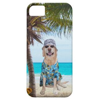 Perro en la playa en camisa hawaiana iPhone 5 funda