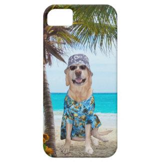 Perro en la playa iPhone 5 fundas