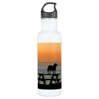 Perro en la puesta del sol de San Francisco Botella De Agua De Acero Inoxidable