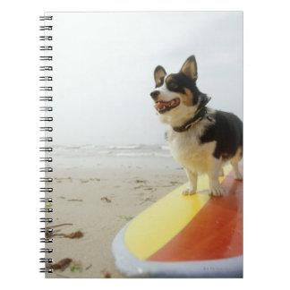 Perro en la tabla hawaiana libros de apuntes