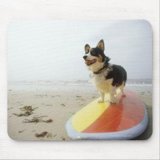 Perro en la tabla hawaiana tapete de raton