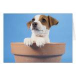 Perro en maceta tarjeta de felicitación
