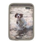 Perro en manga del iPad de la playa la mini