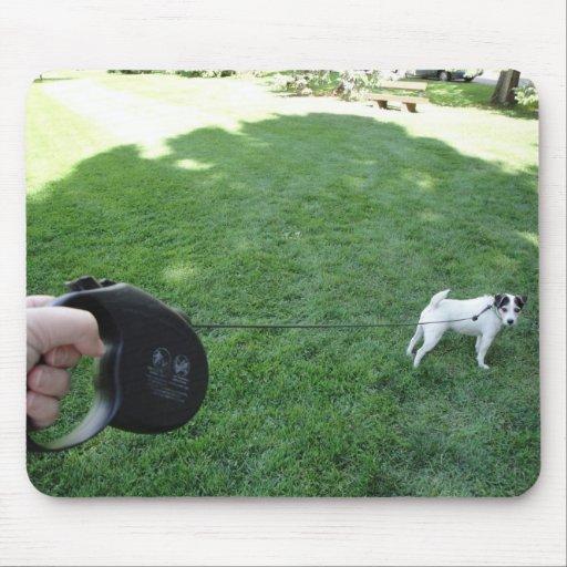 Perro en mousepad del parque alfombrilla de raton