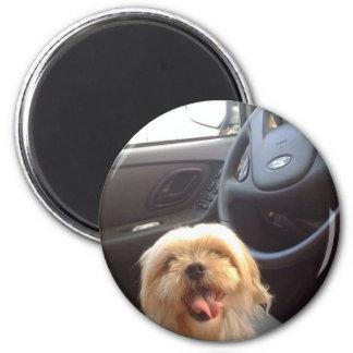 Perro en Seat de conductor Imán Redondo 5 Cm