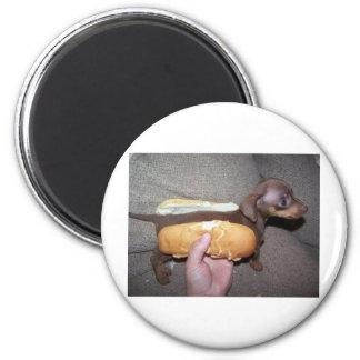 Perro en un bollo imán redondo 5 cm