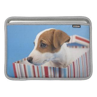 Perro en una caja de regalo fundas MacBook