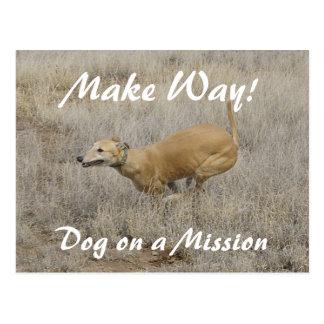 Perro en una misión tarjetas postales