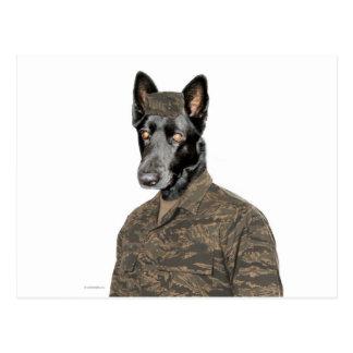 Perro en uniforme tarjetas postales