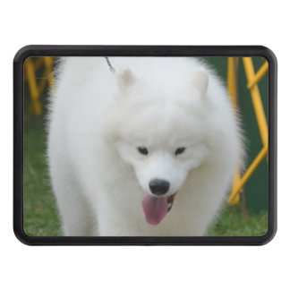 Perro esquimal americano adorable tapas de remolque