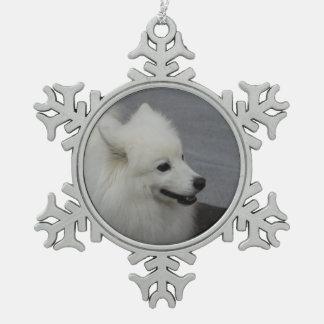 Perro esquimal americano adorno