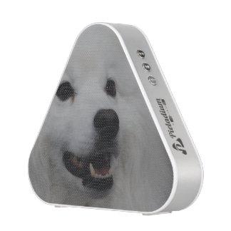 Perro esquimal americano blanco altavoz bluetooth