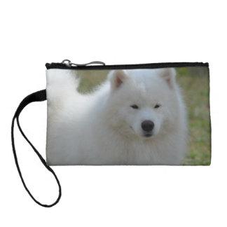 Perro esquimal americano blanco mullido