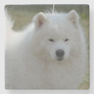 Perro esquimal americano blanco mullido posavasos de piedra