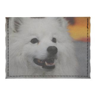 Perro esquimal americano blanco tarjeteros tyvek®