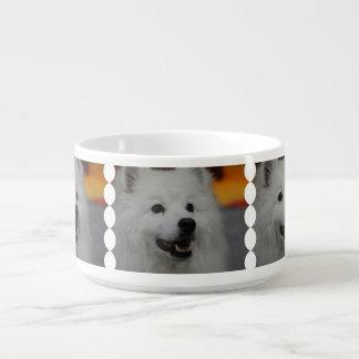 Perro esquimal americano blanco tazón