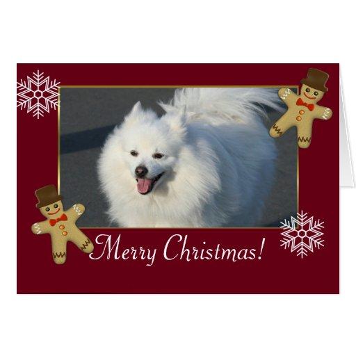 Perro esquimal americano de las Felices Navidad Tarjetón