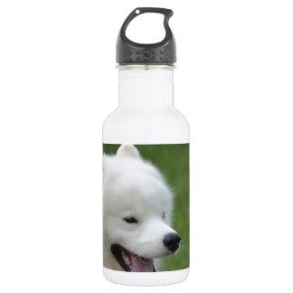 Perro esquimal americano dulce