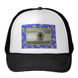 Perro esquimal americano gorros bordados