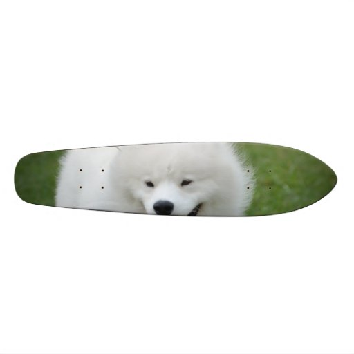 Perro esquimal americano lindo monopatines personalizados