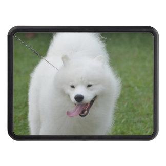 Perro esquimal americano lindo tapas de remolque