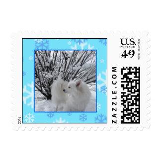 Perro esquimal americano sello postal