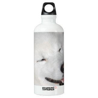 Perro esquimal blanco