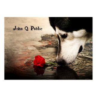 Perro esquimal con la tarjeta de visita del rosa