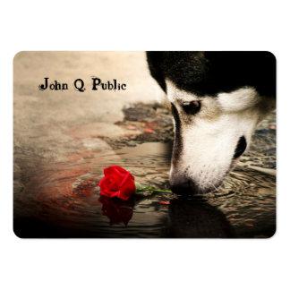 Perro esquimal con la tarjeta de visita del rosa r