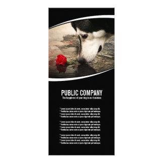 Perro esquimal con la tarjeta del estante del rosa tarjetas publicitarias