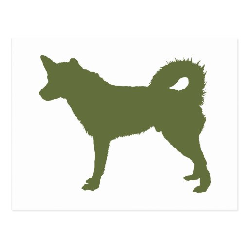 Perro esquimal de Alaska Postales