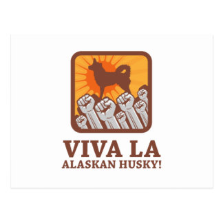 Perro esquimal de Alaska Tarjeta Postal