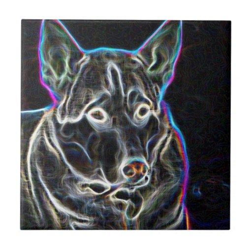 Perro esquimal de neón azulejo cuadrado pequeño