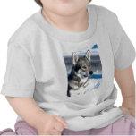 Perro esquimal en camiseta del bebé de la nieve