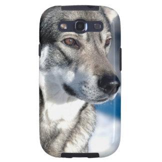 Perro esquimal en caso de la galaxia de Samsung de Galaxy SIII Protectores