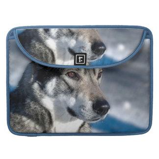 """Perro esquimal en la nieve 15"""" manga de MacBook Fundas Macbook Pro"""