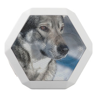 Perro esquimal en nieve altavoces bluetooth blancos boombot REX