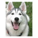 Perro esquimal feliz membrete personalizado