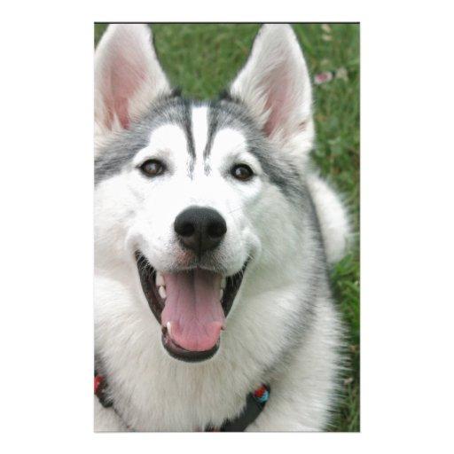 Perro esquimal feliz papelería