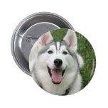 Perro esquimal feliz pins