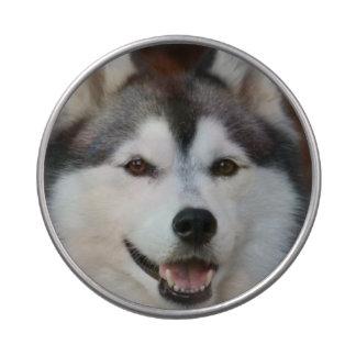 Perro esquimal lindo latas de dulces