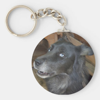 Perro esquimal negro llavero redondo tipo pin