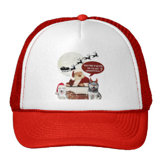 Perro esquimal qué usted no entienden sobre bueno gorras de camionero