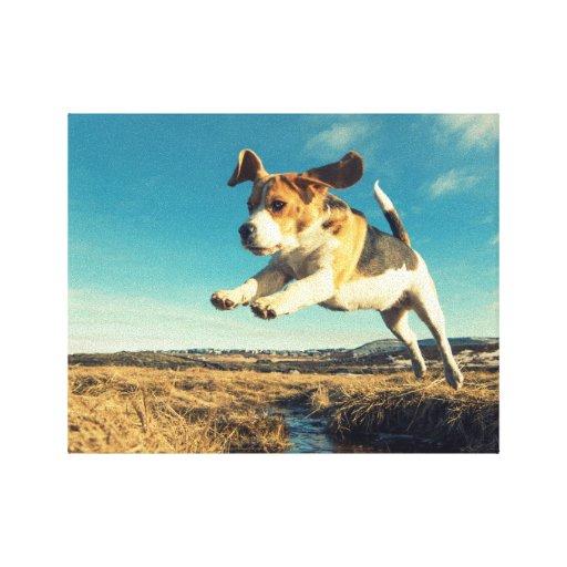 Perro estupendo del beagle - lona envuelta premio impresión en tela